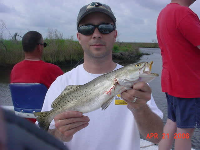 Gulf coast guide reports hopedale louisiana fishing for Hopedale fishing report
